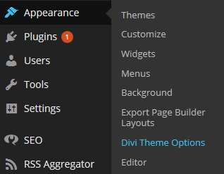 How to Remove the Featured Image in the DIVI Theme